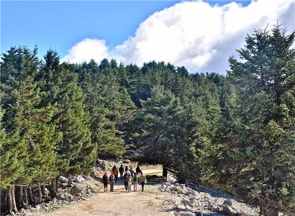 Mt-Ainos